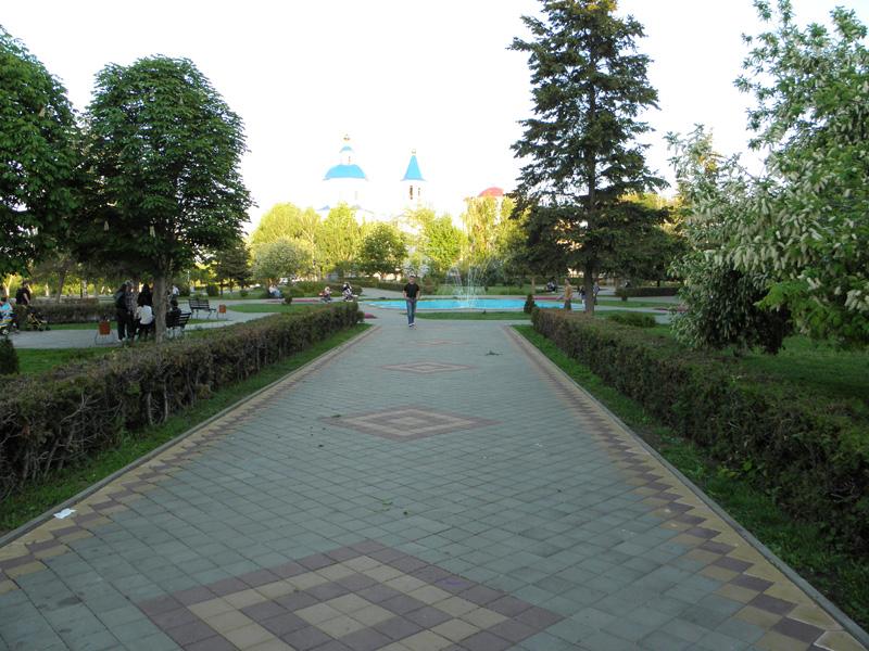 Аллея в парке Сочи