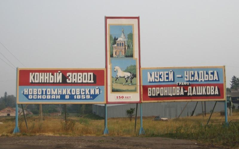 Село Новотомниково
