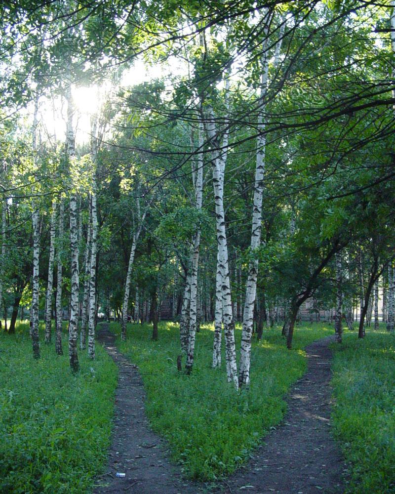 Парк по ул. Рязанской
